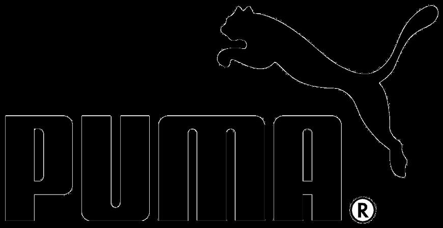 puma-negro